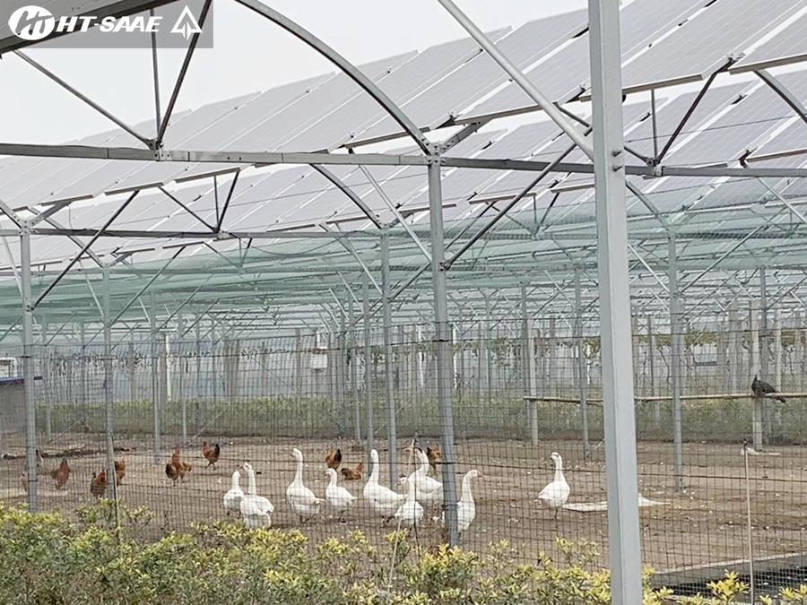 Điện mặt trời mái nhà trang trại nông nghiệp